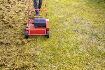 How to Dethatch Your Lawn With a Mower Attachment Easily
